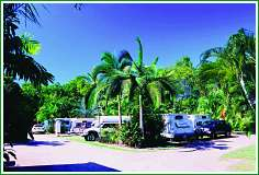 Tropical Hibiscus Caravan Park - Accommodation Coffs Harbour