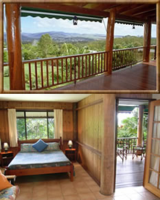 Atherton Blue Gum - Accommodation Coffs Harbour