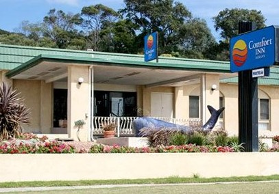 Comfort Inn Albany - Accommodation Coffs Harbour