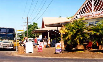 Mission Beach Rainforest Motel - Accommodation Coffs Harbour