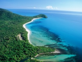 Cape Tribulation Camping - Accommodation Coffs Harbour