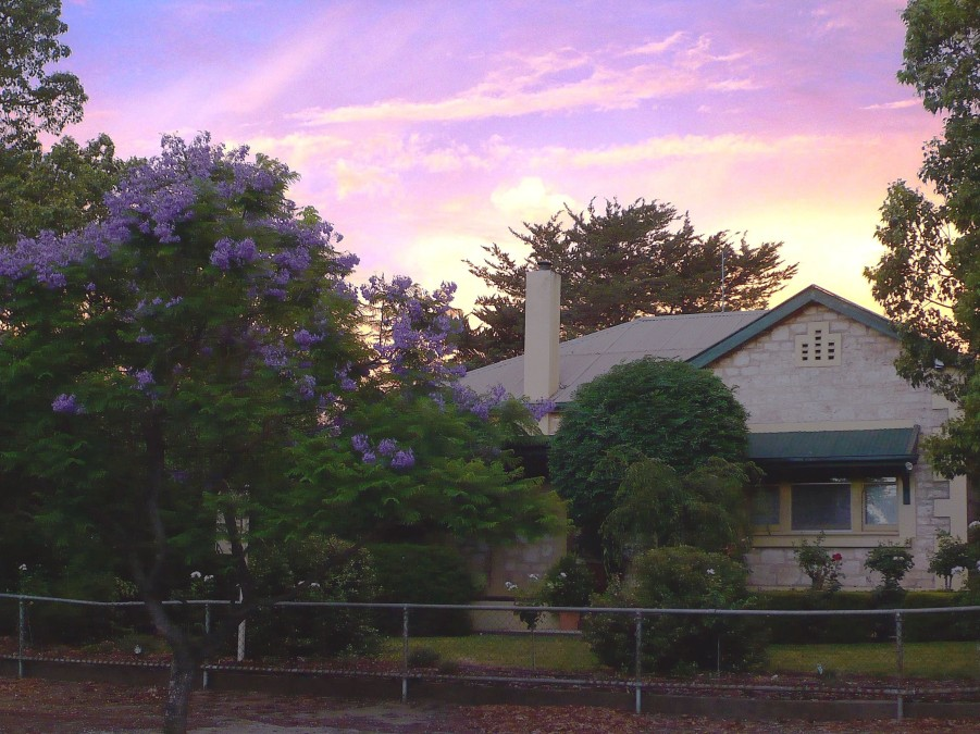 Angaston Rose BB - Accommodation Coffs Harbour