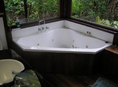 The Canopy Rainforest Tree Houses and Wildlife Sanctuary - Accommodation Coffs Harbour