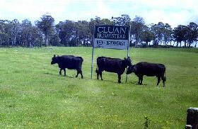 Cluan Homestead - The Managers Residence - Accommodation Coffs Harbour