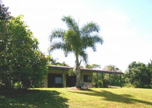 Daintree Mountain View Retreat and Vanilla Beans - Accommodation Coffs Harbour