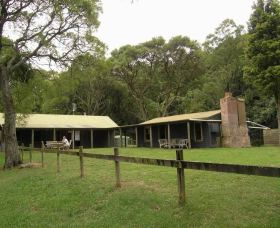 Tree Fern Lodge - Accommodation Coffs Harbour