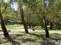 Woods Reserve - Accommodation Coffs Harbour