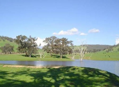 Hillview Farmstay - Accommodation Coffs Harbour
