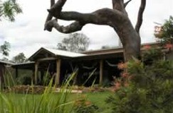 The Hollow Log Country Retreat - Accommodation Coffs Harbour
