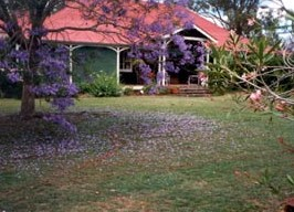 Minmore Farmstay Bed and Breakfast - Accommodation Coffs Harbour