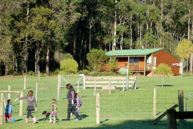 Diamond Forest Farm Stay - Accommodation Coffs Harbour