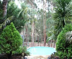Fern Gulley Retreat - Accommodation Coffs Harbour