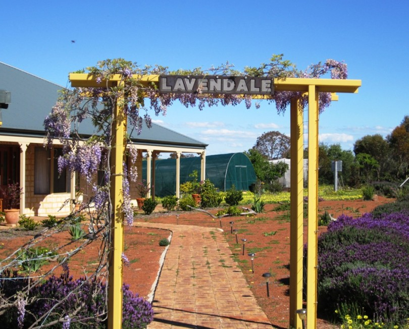 Lavendale Farmstay and Cottages - Accommodation Coffs Harbour
