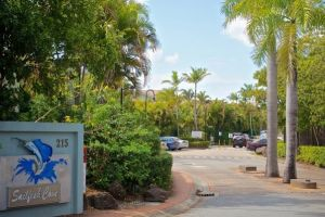 Sailfish Cove - Accommodation Coffs Harbour