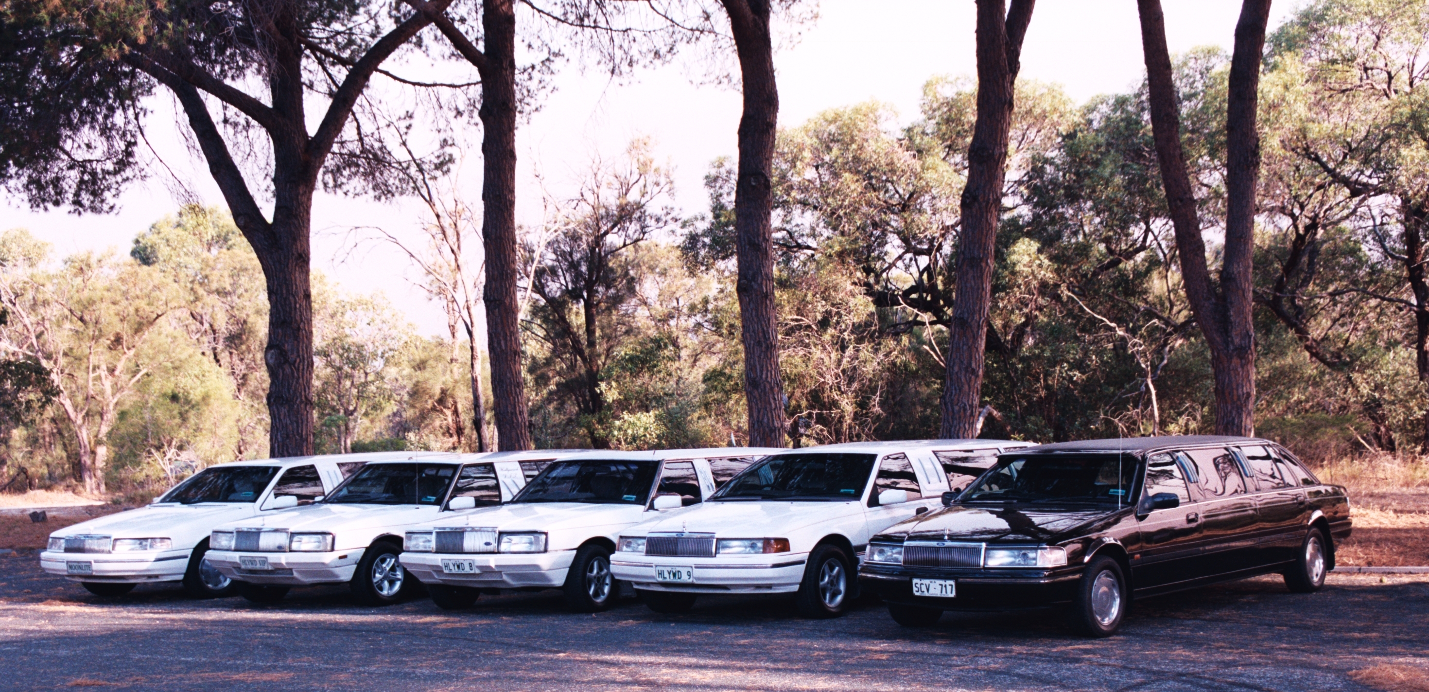 Hollywood VIP Limousines - Accommodation Coffs Harbour