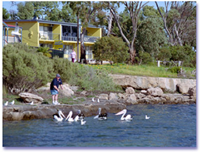 Almonta Holiday Apartments - Accommodation Coffs Harbour