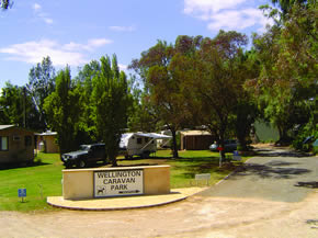 Wellington Caravan Park - Accommodation Coffs Harbour