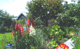 Hopfield Country Cottages - Accommodation Coffs Harbour