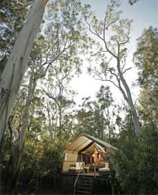 Paperbark Camp - Accommodation Coffs Harbour