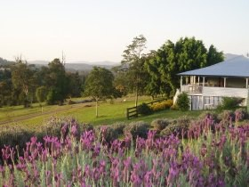 Blue Ridge Lavender Farm And Retreat - Accommodation Coffs Harbour