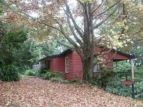 Turkeys Nest Rainforest Cottage - Accommodation Coffs Harbour