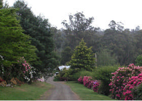 Mountain Rivers Lodge - Accommodation Coffs Harbour