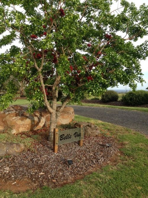 Belle Vue Studio - Accommodation Coffs Harbour