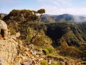 Bendleby Ranges - Accommodation Coffs Harbour