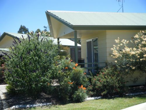 Pepper Tree Cabins - Accommodation Coffs Harbour