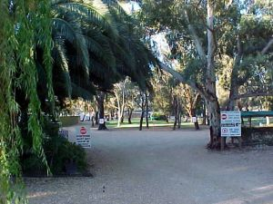 Kingston-On-Murray Caravan Park - Accommodation Coffs Harbour