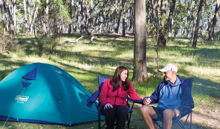 Apsley Falls campground - Accommodation Coffs Harbour