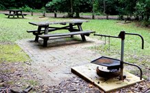 Bellbird campground - Accommodation Coffs Harbour