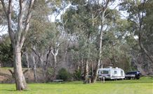 Culcairn Caravan Park - Accommodation Coffs Harbour