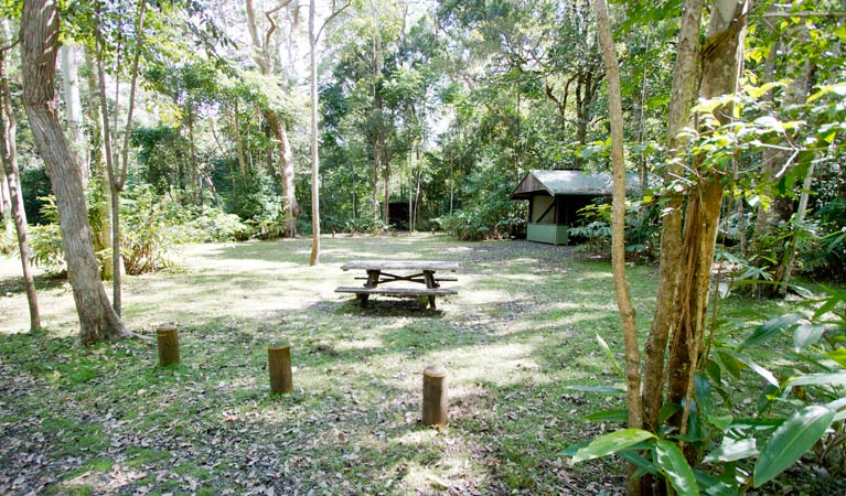 Iron Pot Creek campground - Accommodation Coffs Harbour