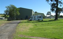 Milton Showground Camping - Accommodation Coffs Harbour