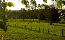 Stone Cottage Mittagong - Accommodation Coffs Harbour