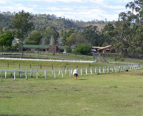 Kellarni Downs Farmstay-Scenic Rim - Accommodation Coffs Harbour