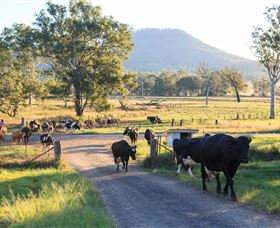 Tommerups Dairy Farmstay - Accommodation Coffs Harbour