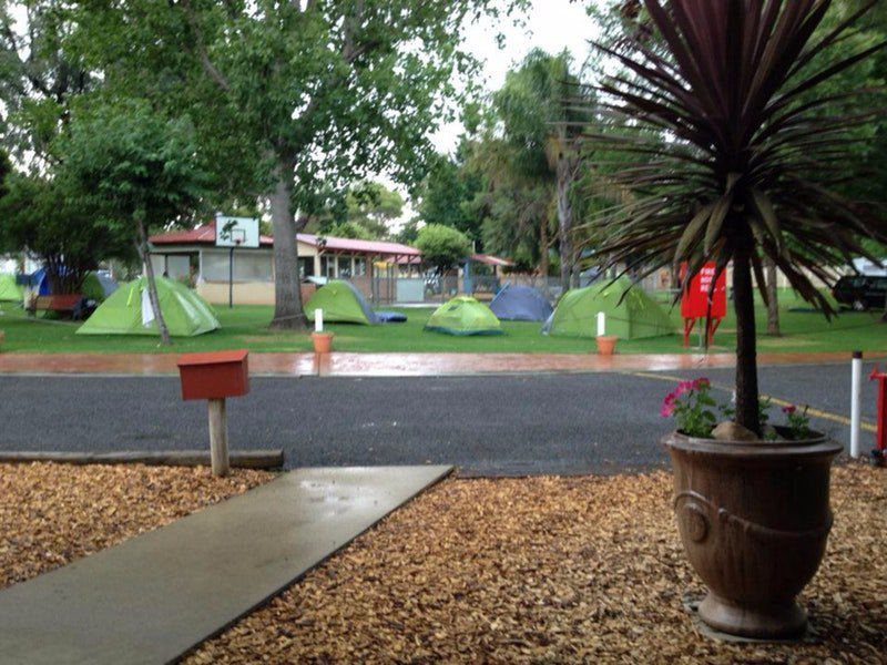 Young Caravan Tourist Park - Accommodation Coffs Harbour