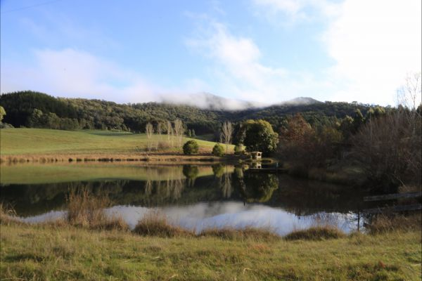 Jamieson Valley Retreat - Accommodation Coffs Harbour