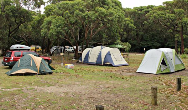 Pretty Beach Campground Murramarang National Park - Accommodation Coffs Harbour