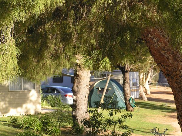 Barmera North Lake Caravan Park - Accommodation Coffs Harbour