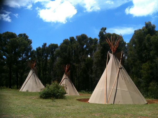Kinglake Forest Adventures Camp - Accommodation Coffs Harbour