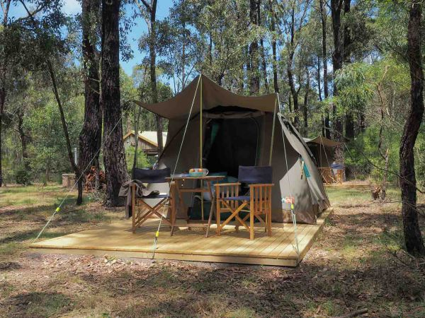 Tall Trees Camping on the Great Ocean Road - Accommodation Coffs Harbour