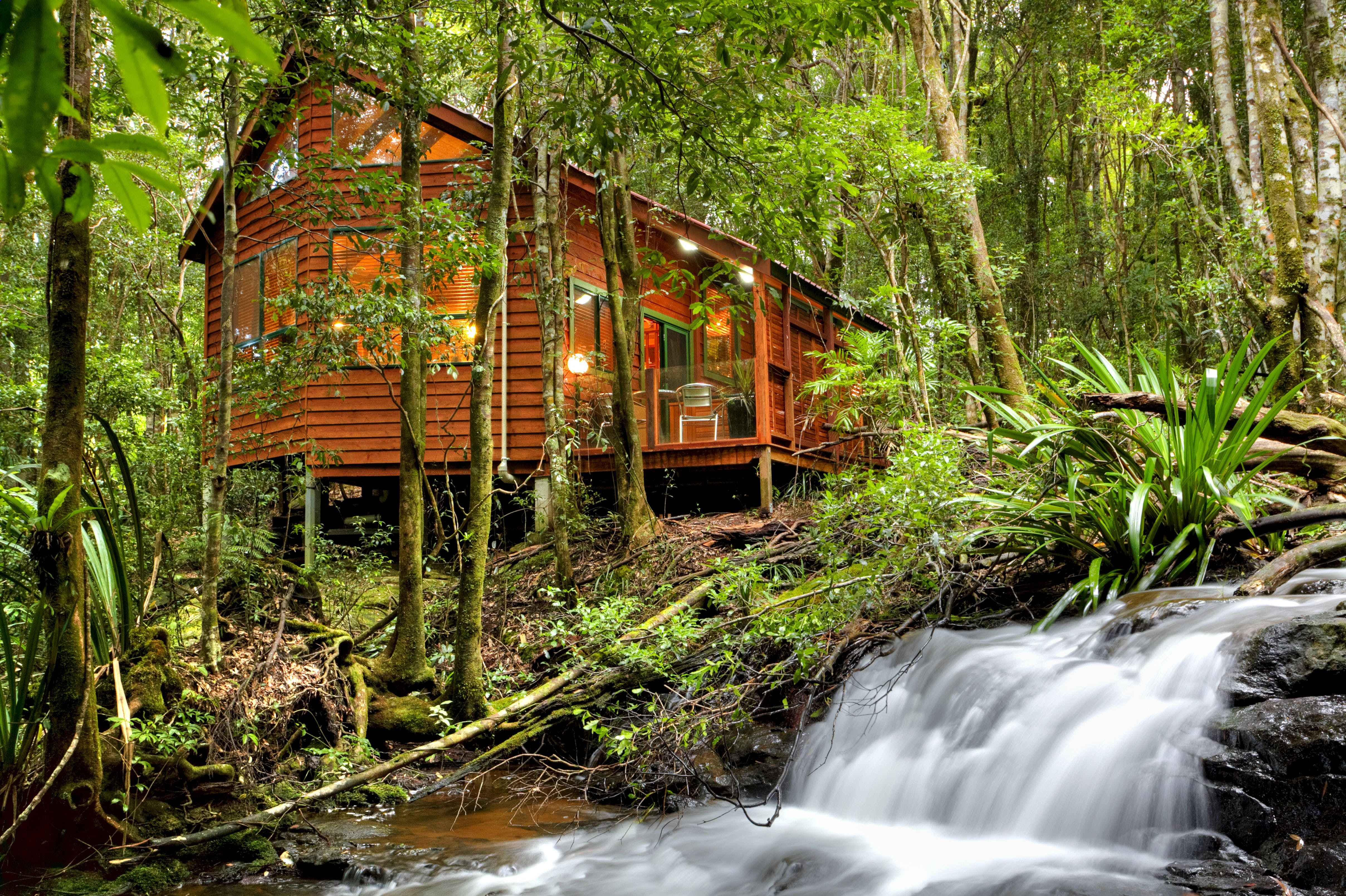 The Mouses House - Rainforest Retreat - Accommodation Coffs Harbour