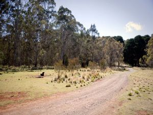 The Pines campground - Accommodation Coffs Harbour