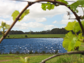 Bettenays Lakeside Loft Apartment and Vineyard Chalets - Accommodation Coffs Harbour