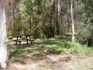 Mulloon Creek campground - Accommodation Coffs Harbour