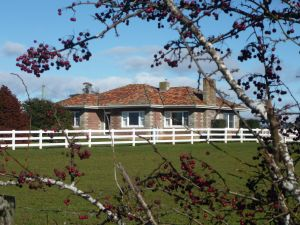 Little Sunnyside Accommodation - Accommodation Coffs Harbour