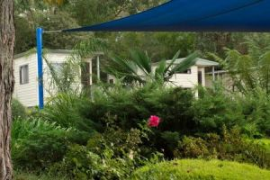 Healesville Tourist Park - Accommodation Coffs Harbour